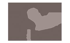 Logo Wientek